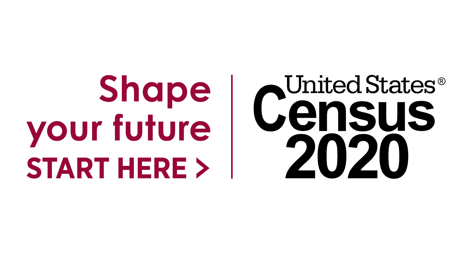 2020 Census Library Guide